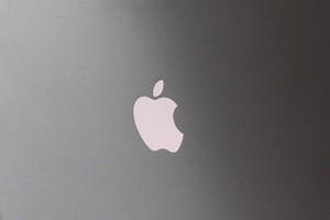 la manzana de apple en las piscinas de obra madrid